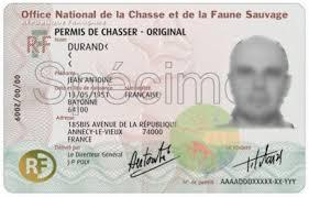 photo d'identité permis de chasse